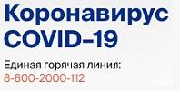 Коронавирус COVID–19: Официальная информация о коронавирусе в России на портале – стопкоронавирус.рф